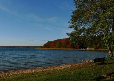 Herbst am Stechlin